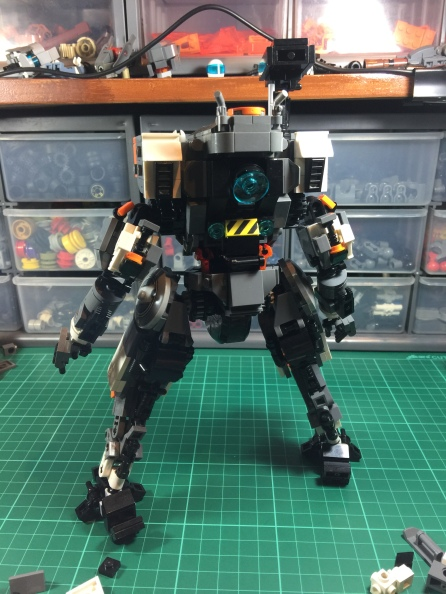 Initial finished build: back view